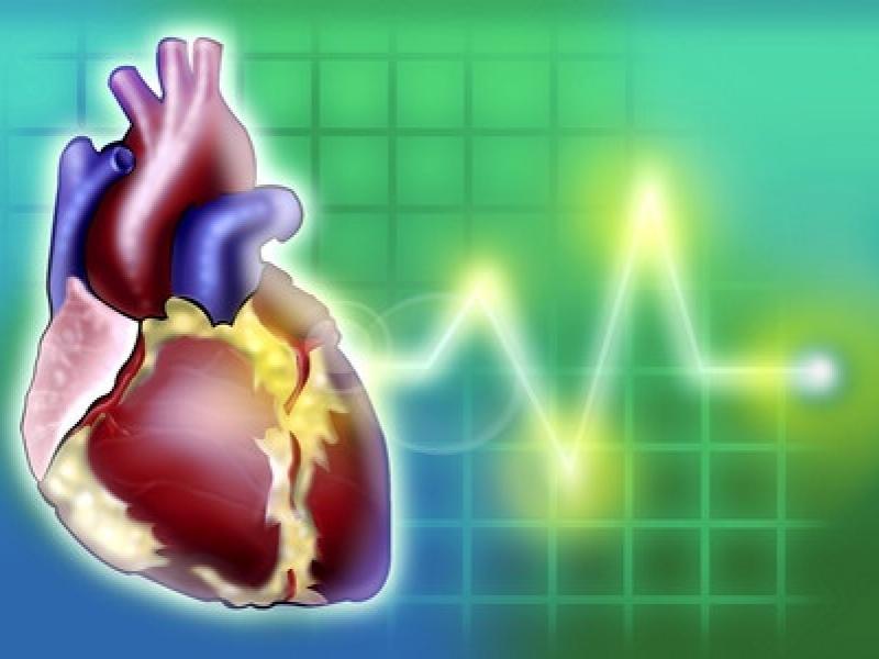 heart.jpg (keep)
